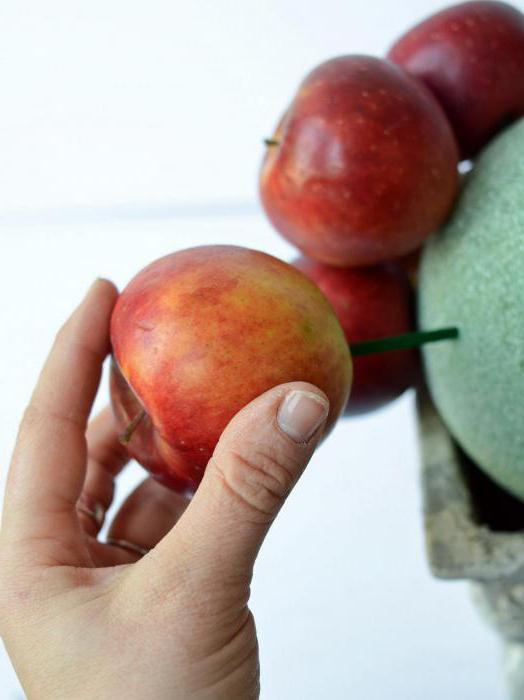 фруктовые топиарии мастер класс