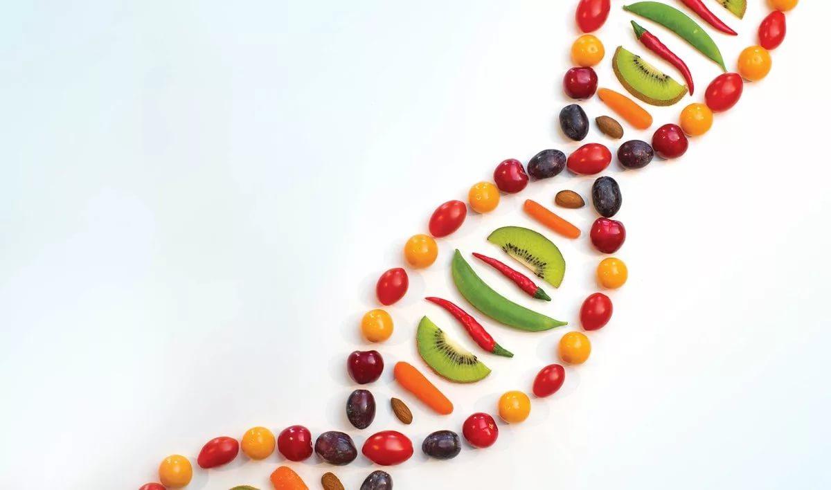 Ген похудения поможет забыть о диетах
