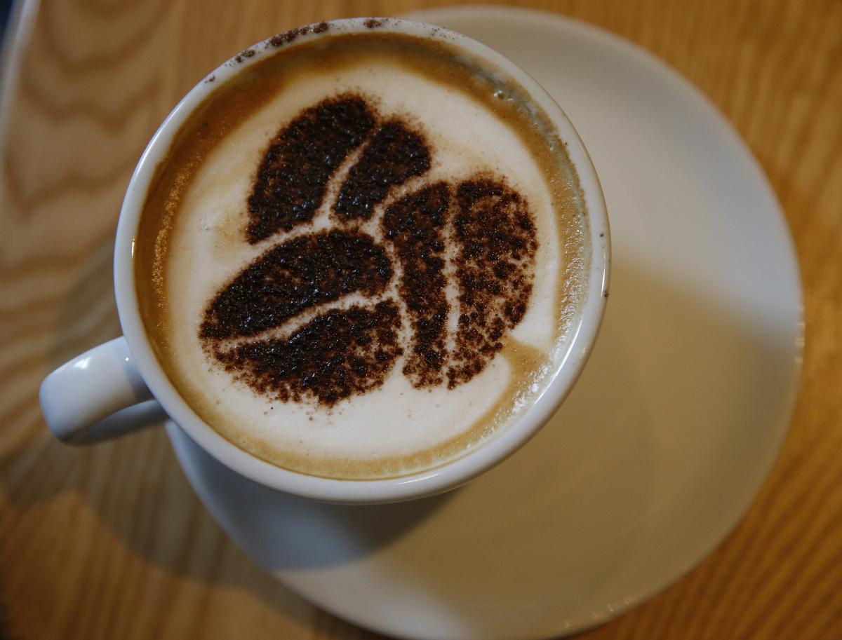 Как пить кофе, чтобы похудеть