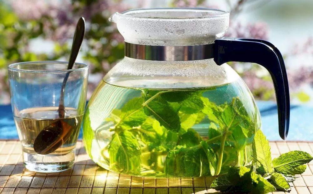 Как грамотно выбрать и пить мочегонные травы для похудения