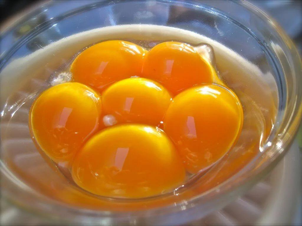 Какие жирные продукты полезны для здоровья