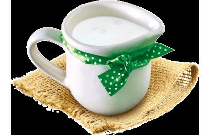 Молочные продукты: их польза для организма, свежие продукты с доставкой на дом